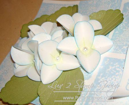 Cindee flower 5