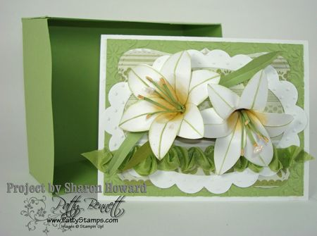 Sharon easter lily