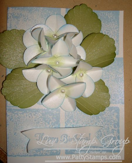 Cindee flower 3