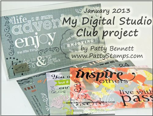 January 2013 MDS club project 2