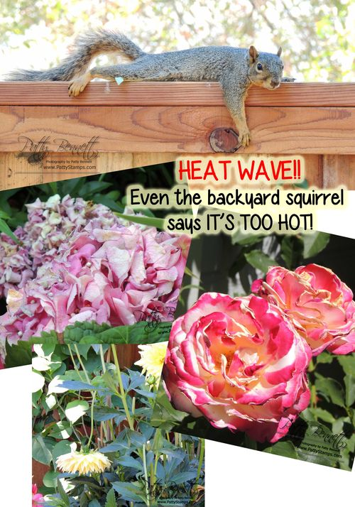 Heat wave too hot