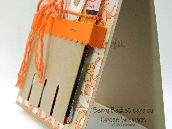 Berry-basket-card-cindee-1-stampin-up-seed-packet-side-view