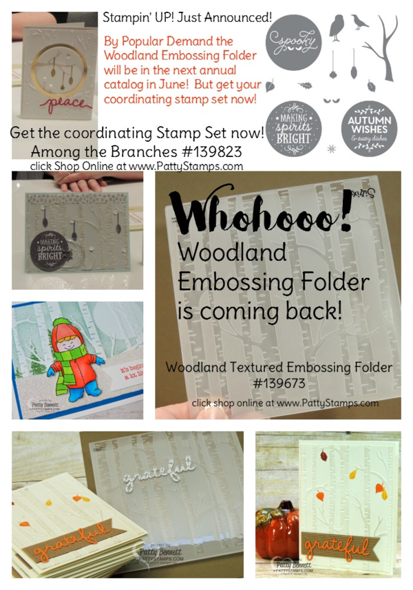 Woodland Embossing Folder from Stampin' Up! will be available again in the upcoming catalog, June 2016. Get your Among the Branches coordinating stamp set now! click shop online at www.pattystamps.com and enter #139823