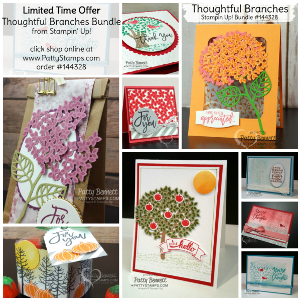 Thoughtful Branches card and 3-d projects. Stampin' Up! limited time offer bundle.  by Patty Bennett at pattystamps.com