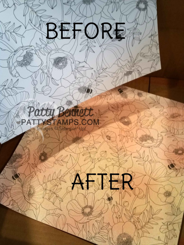 """Before and after using Stampin' Spritzers on the Stampin Up! Inside the Lines """"coloring book paper"""" - free gift choice with $50 purchase in my online store through March 30, 2017, www.pattystamps.com"""