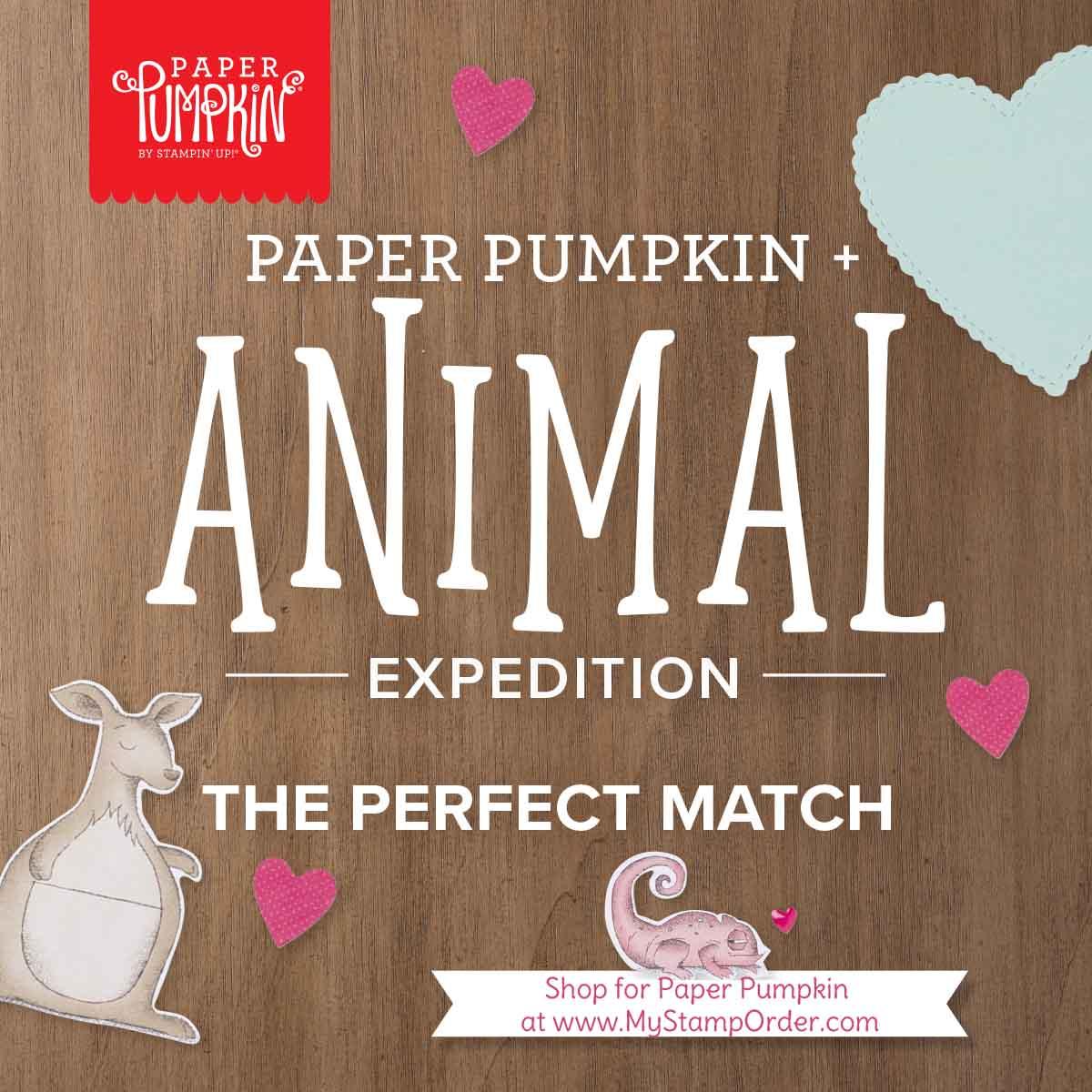 Be Mine Paper Pumpkin Valentine Kit