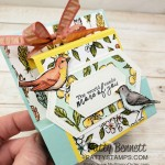 Flat Pop Up Card featuring Stampin