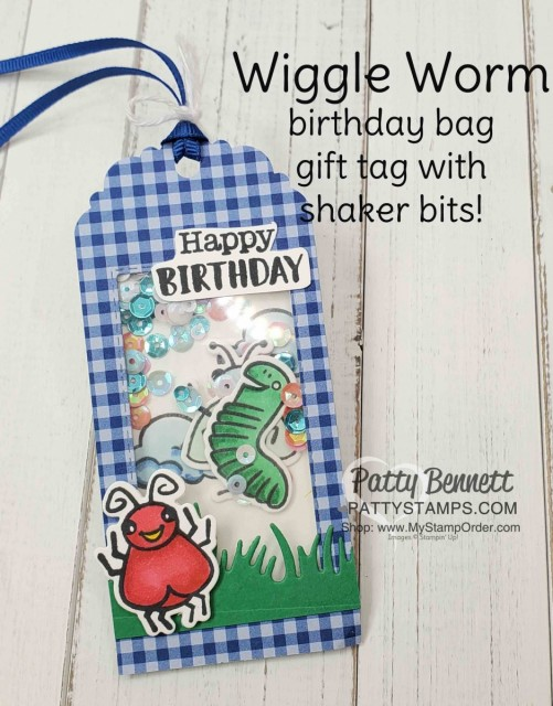Wiggle Worm stamp set and Wiggly Bugs dies from Stampin' UP! - cute birthday gift bag tag / Shaker card idea. www.PattyStamps.com