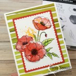 Painted Poppies stamp set from Stampin Up. Card idea featuring Stitched so Sweetly scalloped rectangle die and Peaceful Poppies DSP by Patty Bennett www.PattyStamps.com