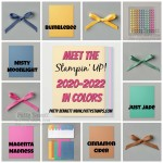 New Stampin Up 2020 2022 In Color cardstock, ribbons, ink, and accessories for card making and paper crafting! www.PattyStamps.com