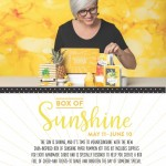 Stampin Up June 2020 Paper Pumpkin crafting kit featuring 8 cards and a giftable box of sunshine to brighten someones day! www.PattyStamps.com