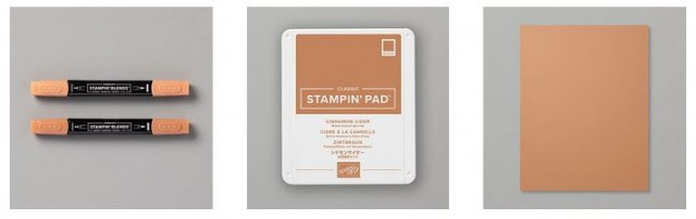 Stampin' UP! Cinnamon Cider In Color 2020-2022 www.PattyStamps.com